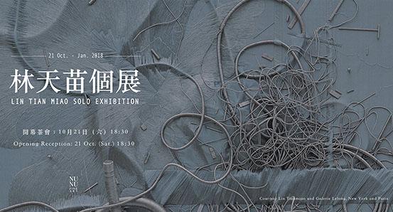 林天苗在台首次個展 Lin Tianmiao Solo Exhibition