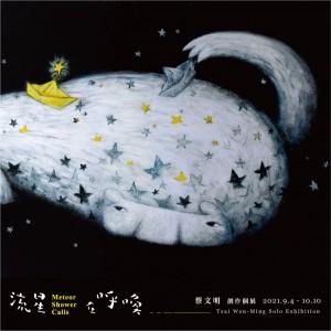 蔡文明 創作個展【流星在呼喚】 Tsai Wen-Ming Solo Exhibition: Meteor Shower Calls