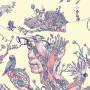 Summerise - 插畫展【画什麼哲學?】